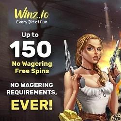 Winz 150 FS banner